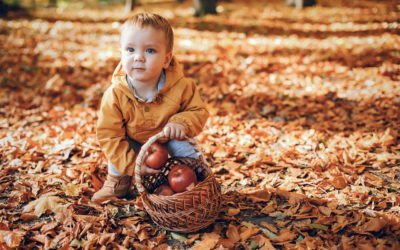 Fun Fall Activities for You and Your Family